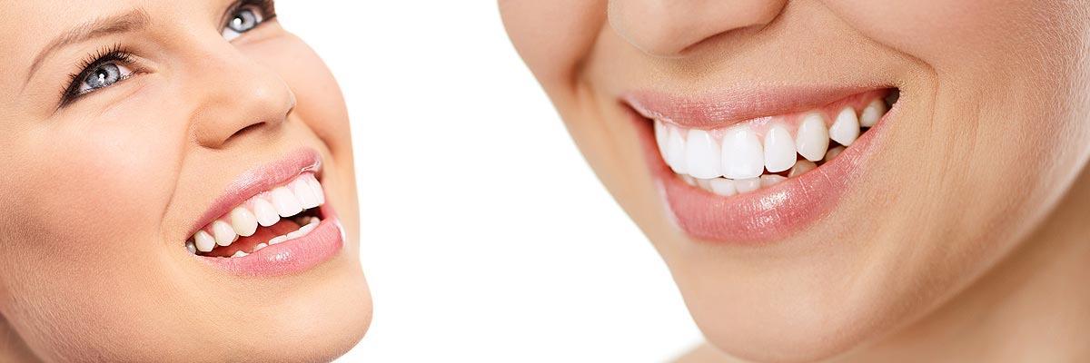 LA Dental Arts-Bershadsky DDS-Los Angeles Dentist-privacy policy header
